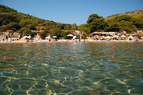 Lopud, Κροατία: Sunj Beach