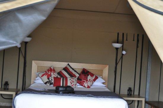 Pebble Point: tent