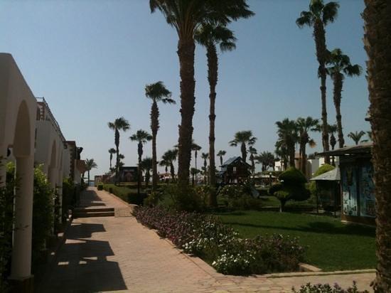 Al Mashrabiya: Дорога к морю