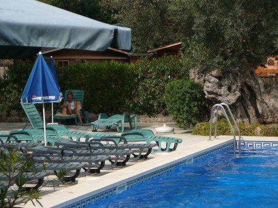 Hotel Soller Garden: Pool