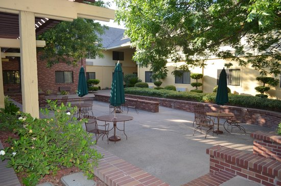 The Modesto Hotel : Courtyard1