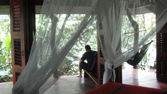 Playa Nicuesa Rainforest Lodge: View from our cabin. We felt surrounded by nature!