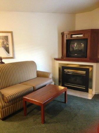 Sonesta ES Suites Princeton : Livingroom
