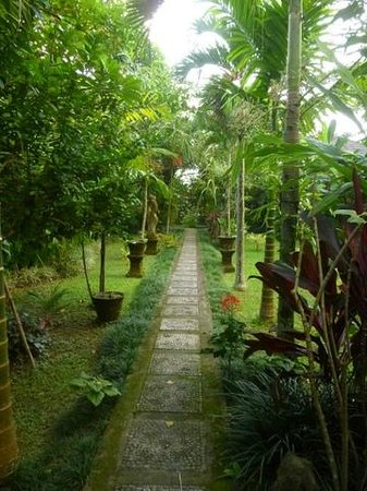 Santra Putra Guest House : Santra Putra grounds