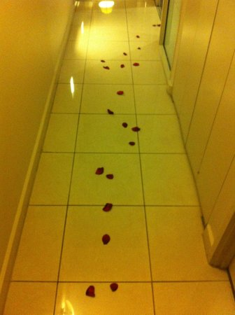 Oaks Embassy: roses in the hallway