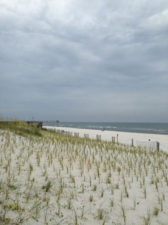 Best Western Ft. Walton Beachfront: sand dunes were pretty