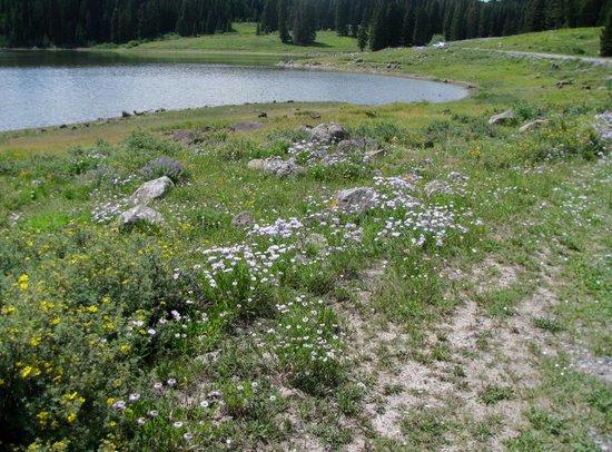 Grand Junction, Κολοράντο: Eggleston Lake