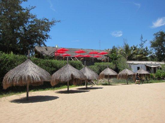 Casa Barry Lodge: Tofu beach