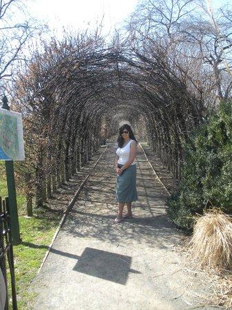 Snug Harbor Cultural Center : Path