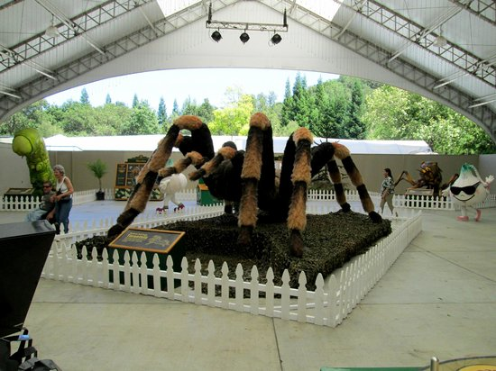 Gilroy Gardens Family Theme Park: Giant Insects on display!