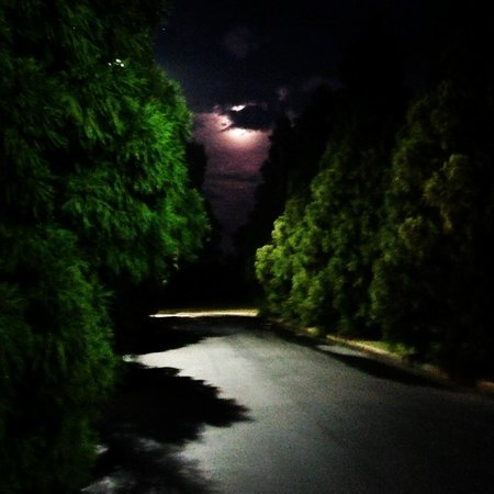 Hampton Inn Lagrange near Callaway Gardens: Hotel Drive way at night