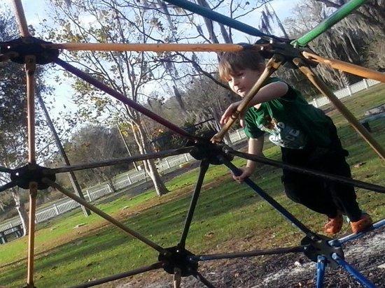 Mary Holland Park: Jungle Gym