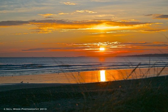 Nantasket Beach : Sunrise through the Nantasket seagrass
