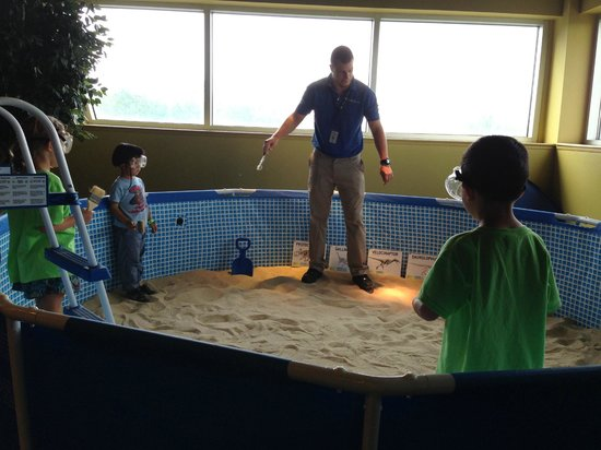 Liberty Science Center: fossil hunt