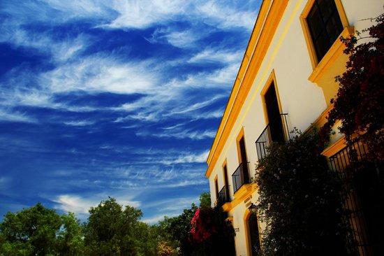 Hacienda de San Rafael: Sky