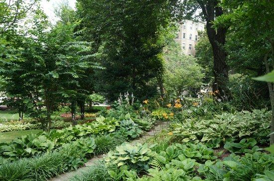 Washington Marriott Wardman Park: Beautiful park-like grounds