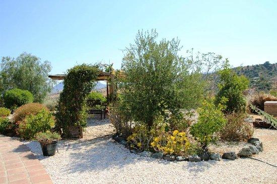 Cortijo Valverde: Garten/Anlage