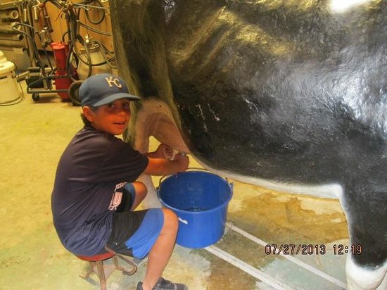 National Agricultural Center and Hall of Fame : milking cow