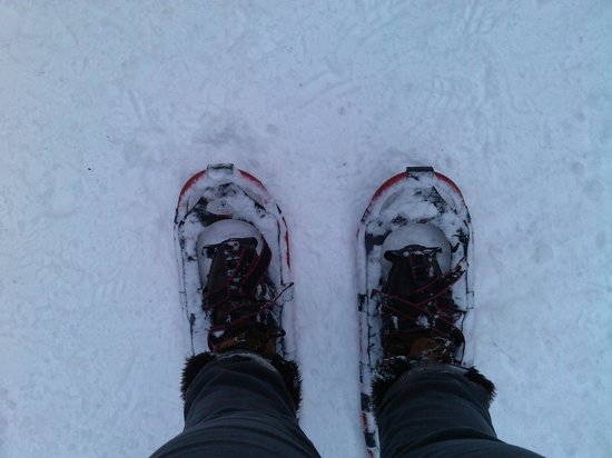 Willow River State Park : snowshoes