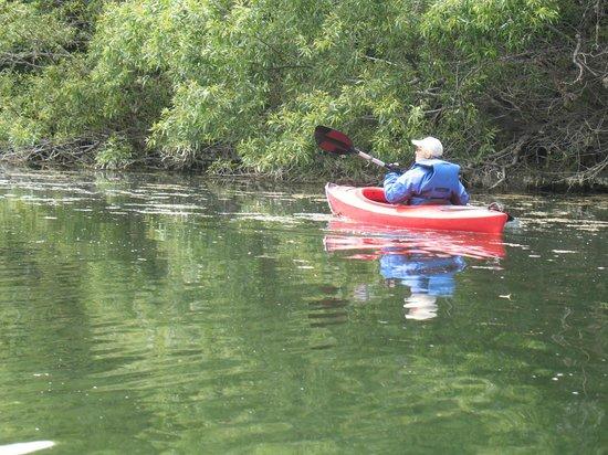 Gualala River July 2013