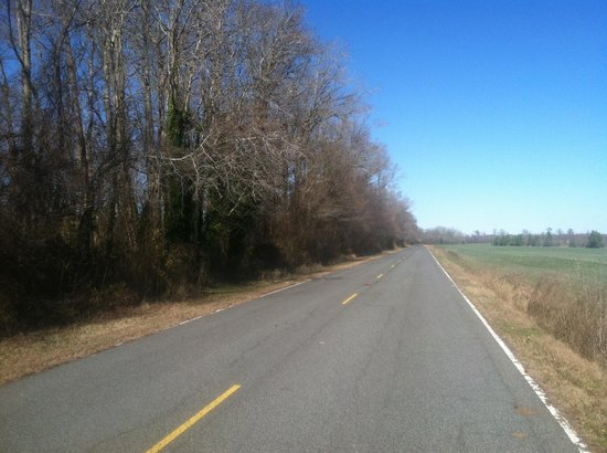 Dismal Swamp Canal Trail: Towards the middle to end of the trail next to a farm.