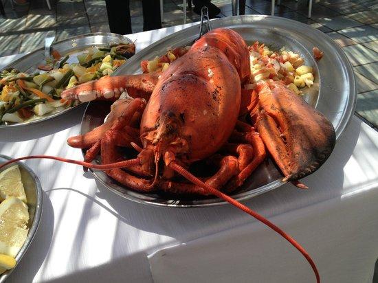 Hotel Punta Rossa: Buffet sul mare : un'insalata con il leone di mare