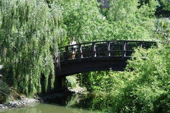 戴維斯大學植物園照片