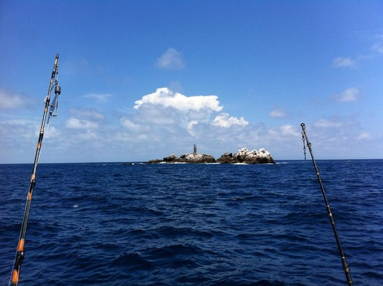 La corbetena island amazing fishing spot picture of for Puerto vallarta fishing