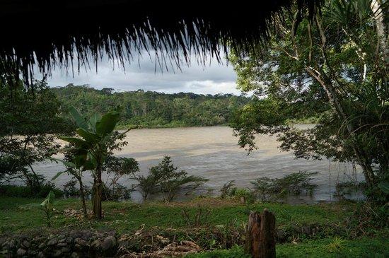 Cotococha Amazon Lodge: Napo River from our lodge