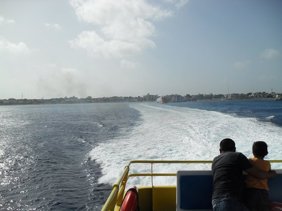 Sunscape Sabor Cozumel: ferry to Playa del Carmen