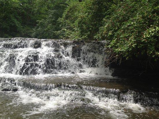 Corbett's Glen Nature Park: Waterfall at Corbett's Glen