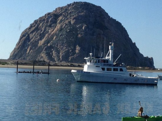 Rose's Bar & Grill: Morro Bay by  The Landing