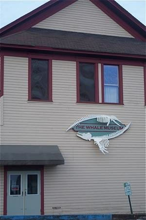 The Whale Museum, Friday Harbor, WA