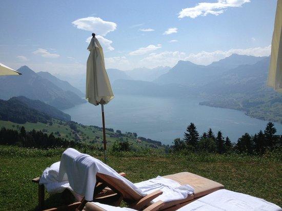 Hotel Villa Honegg: Vue sur le lac