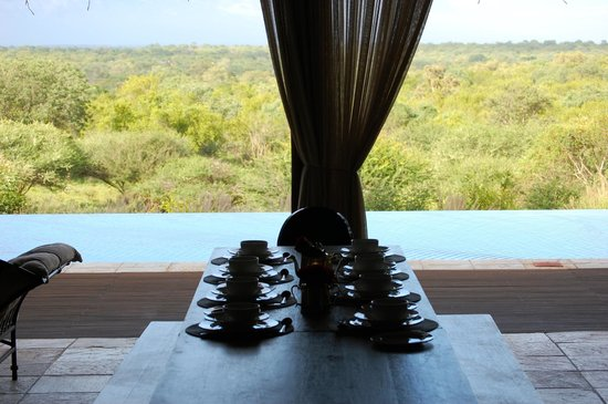 Khaya Ndlovu Manor House: Great view for dinner!