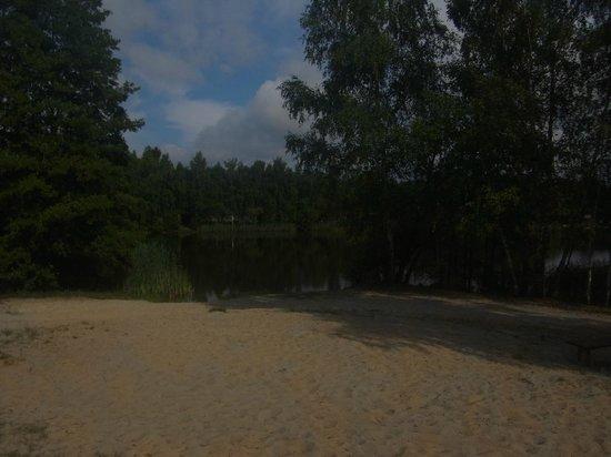 Seehotel & Wellnessdorf Arche Noah: Badesee