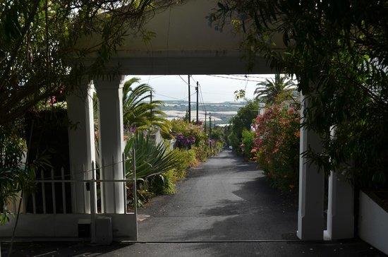 img 20160904 wa0003 bild von la palma jardin los llanos de aridane tripadvisor. Black Bedroom Furniture Sets. Home Design Ideas