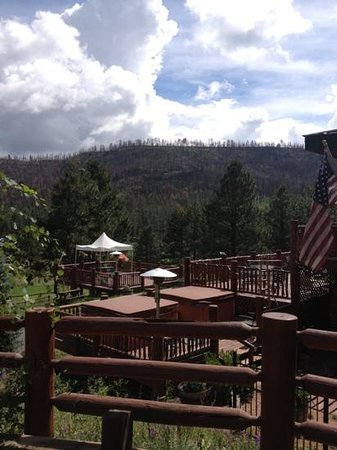 The Greer Peaks Lodge: view from resort is now of burnt trees
