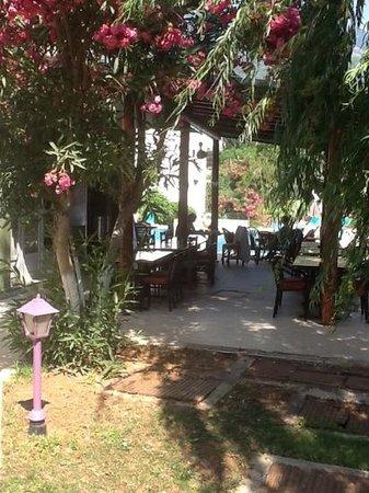 Balkaya Hotel: view from gazebo