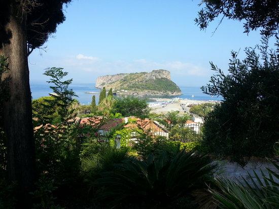 Villa Nappi Bed & Breakfast : la veduta dell'Isola di Dino dall'Hotel