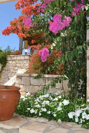 Lycia Apart Otel: Garden area around our room