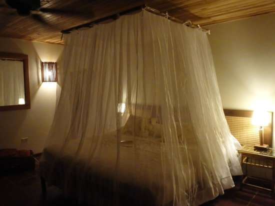El Remanso Lodge: windows and doors are open all day - the bug net was helpful at night (not many bugs though)