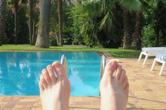 Hotel des Mimosas : vue de la piscine
