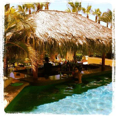 Misiones del Cabo: Swim up pool bar