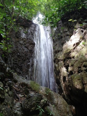 El Remanso Lodge: 100 ft waterfall down at the beach
