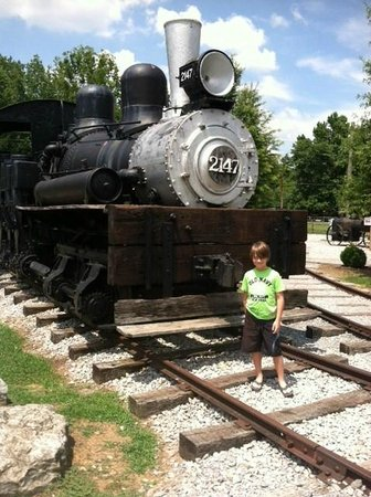 The Little River Railroad and Lumber Company Museum: Perfect picture spot