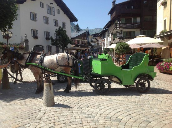Alpaga : La Calèche que j'ai prise pour faire un tour dans Megève