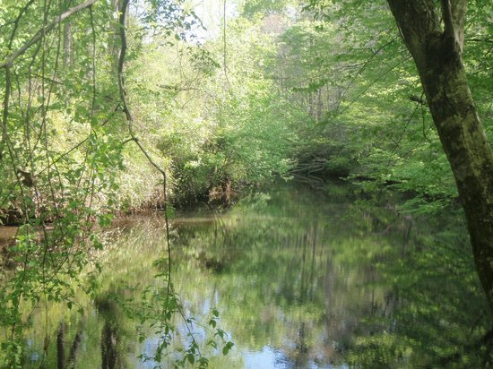 Occoneechee Mountain State Natural Area: The Eno River
