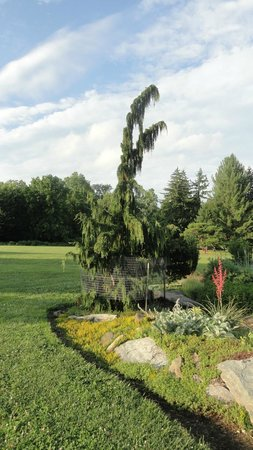 Cylburn Arboretum: Cylburn Garden