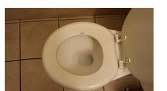 Anaheim Executive Inn & Suites: toilet seat dirty- stained and jusat gross